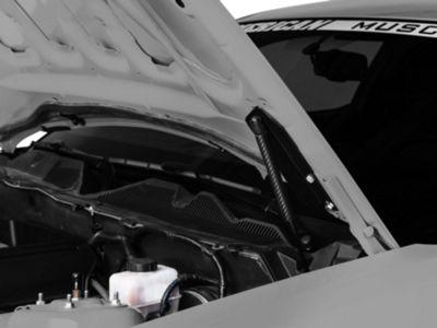MMD Bolt On Hood Strut Kit - Carbon Fiber (05-14 All)