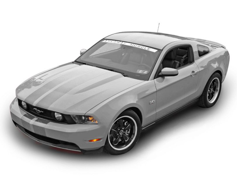 American Muscle Graphics Lemans Stripes; Silver; 8-Inch (79-20 All)