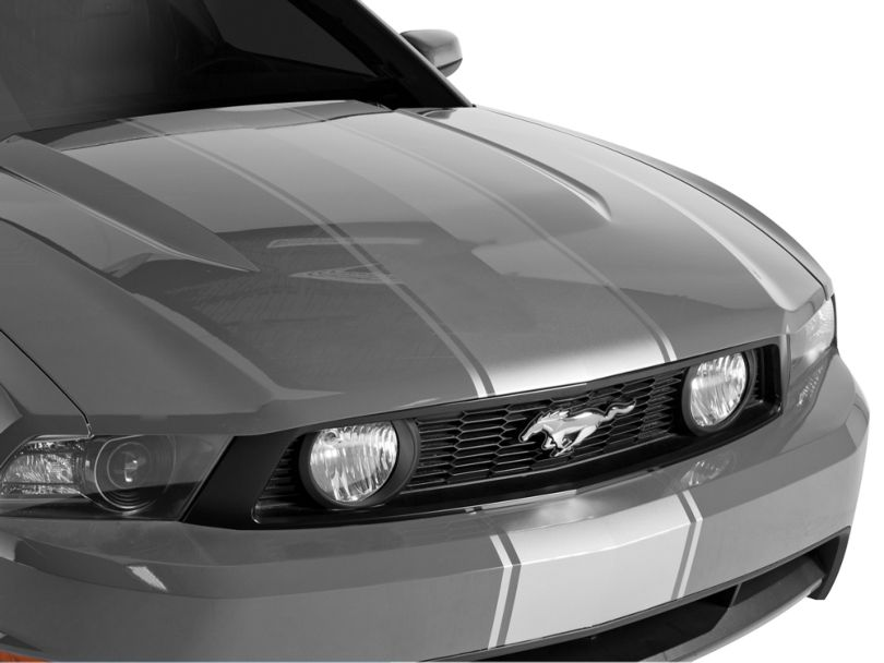 American Muscle Graphics Super Snake Style Stripes; Silver (79-20 All)
