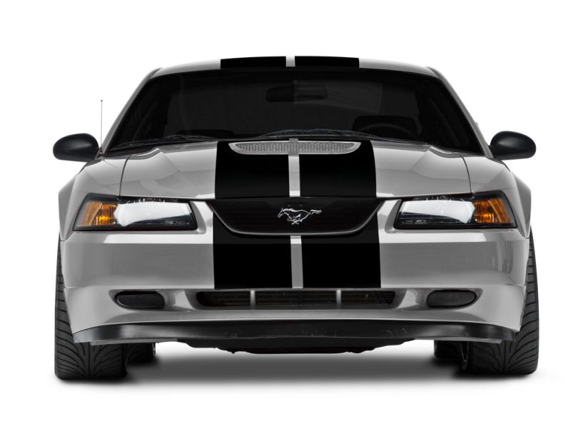 American Muscle Graphics GT500 Style Stripes; Black; 10-Inch (94-04 All)