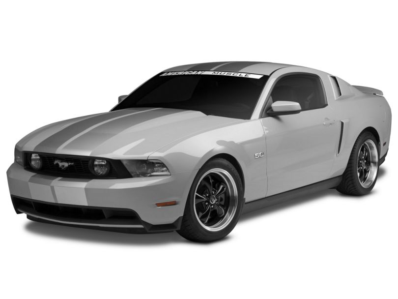 American Muscle Graphics Silver GT500 Style Stripes - 10 in. (79-20 All)