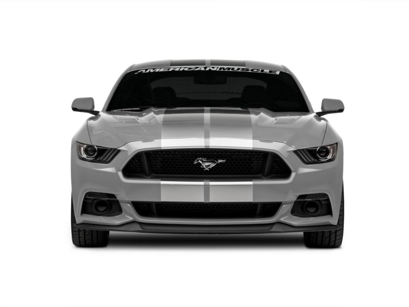 American Muscle Graphics Silver GT500 Style Stripes - 10 in. (15-20 All)
