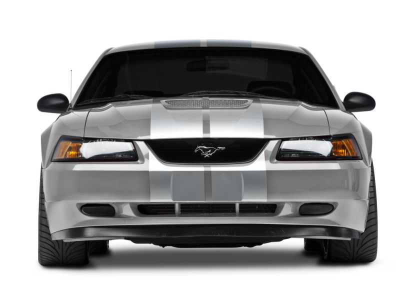 American Muscle Graphics GT500 Style Stripes; Silver; 10-Inch (94-04 All)