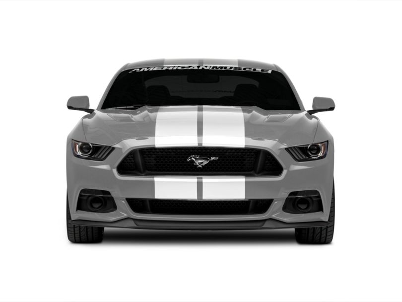 American Muscle Graphics White GT500 Style Stripes - 10 in. (15-20 All)