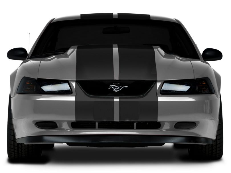 American Muscle Graphics Lemans Stripes; Matte Black; 12-Inch (94-04 All)