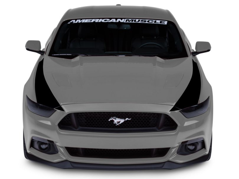 American Muscle Graphics Outer Hood Stripes - Black (15-17 All)