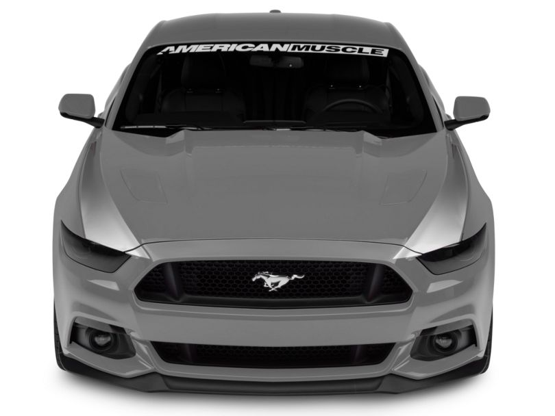 American Muscle Graphics Outer Hood Stripes - Silver (15-17 All)