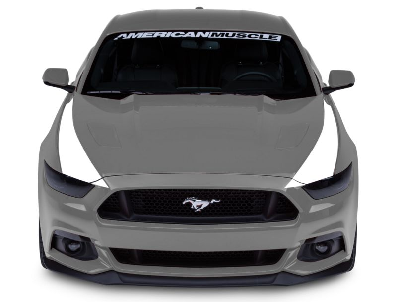 American Muscle Graphics Outer Hood Stripes; White (15-17 All)