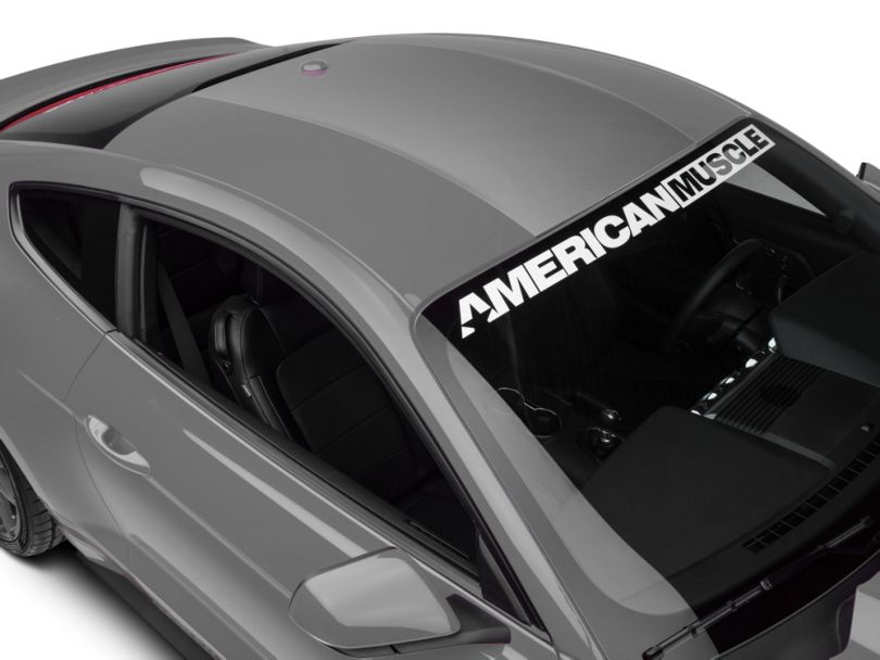 American Muscle Graphics Roof Panel Decal - Silver (15-20 All)