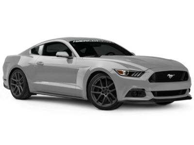 American Muscle Graphics Silver Side Stripe (15-19 All)