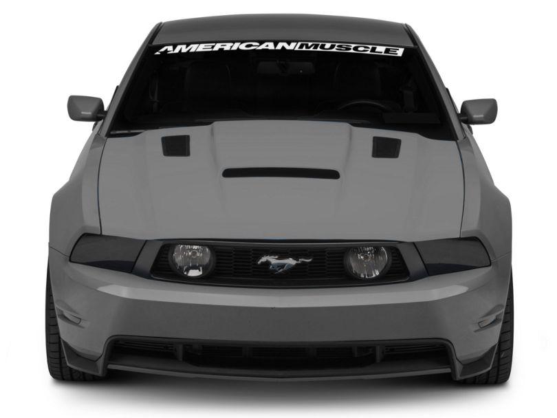 Cervini's Stalker II Hood w/ Louvers - Unpainted (10-12 GT, V6)