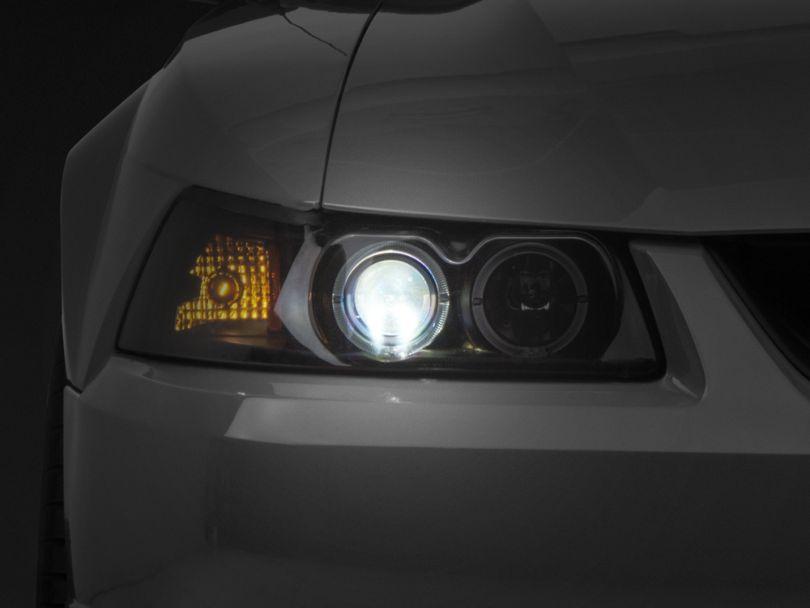 Axial Headlight LED Conversion Bulb Kit; H7 (99-04 w/ Raxiom Headlights)