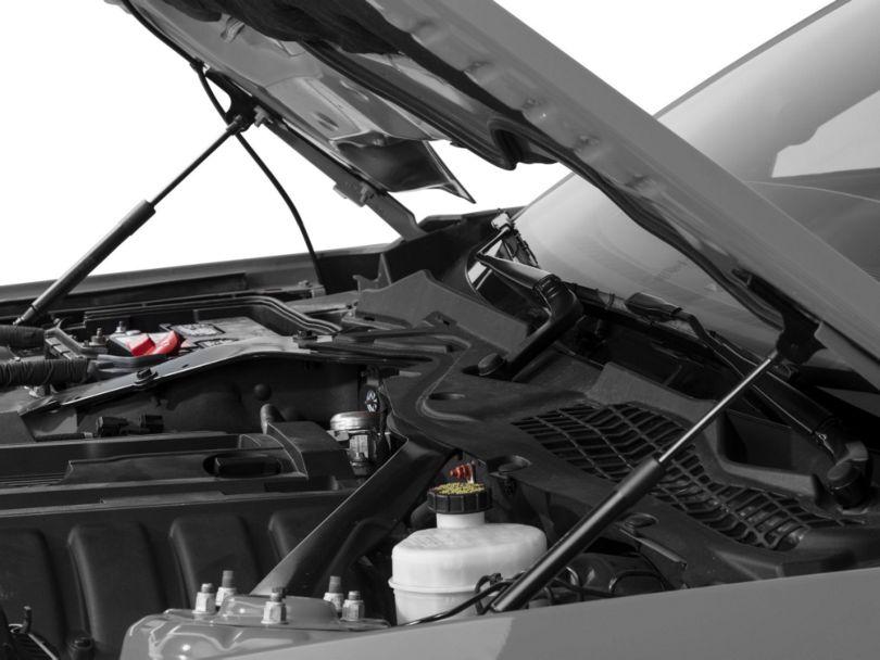 Roush Hood Strut Kit (15-20 GT, EcoBoost, V6)