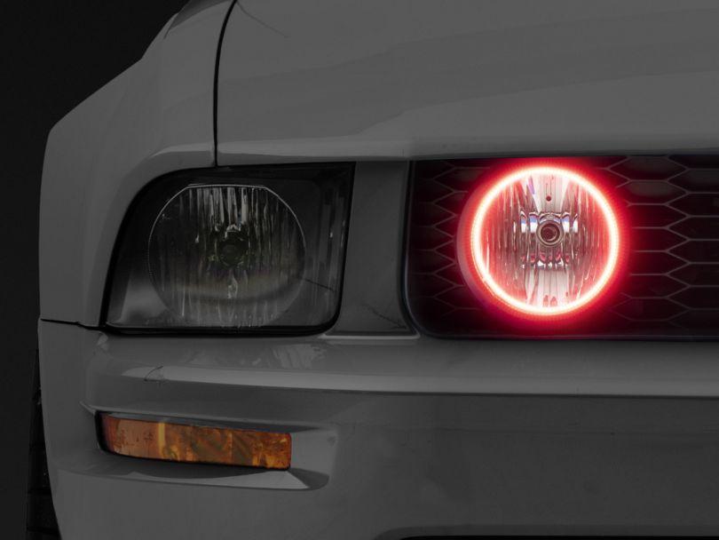 Oracle LED Fog Light Halo Conversion Kit (05-09 GT)