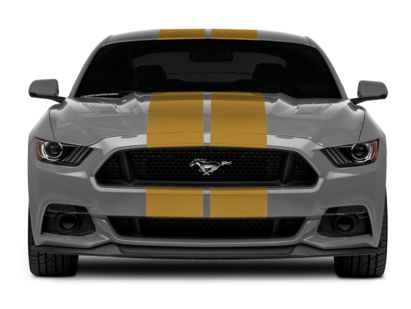 American Muscle Graphics Gold GT500 Style Stripes - 10 in. (15-20 All)