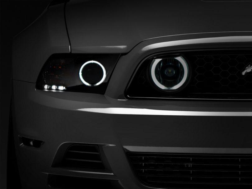 Raxiom CCFL Halo Fog Lights; Smoked (13-14 GT)