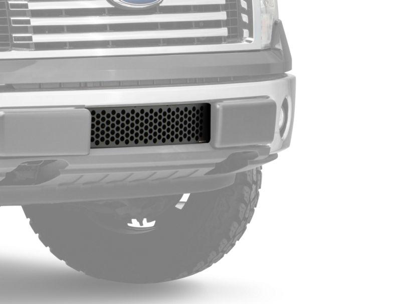 Punch Design Lower Bumper Grille Insert; Black (09-14 F-150, Excluding Raptor, Harley Davidson & 2011 Limited)