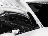 MMD Bolt On Hood Strut Kit; Carbon Fiber (05-14 All)