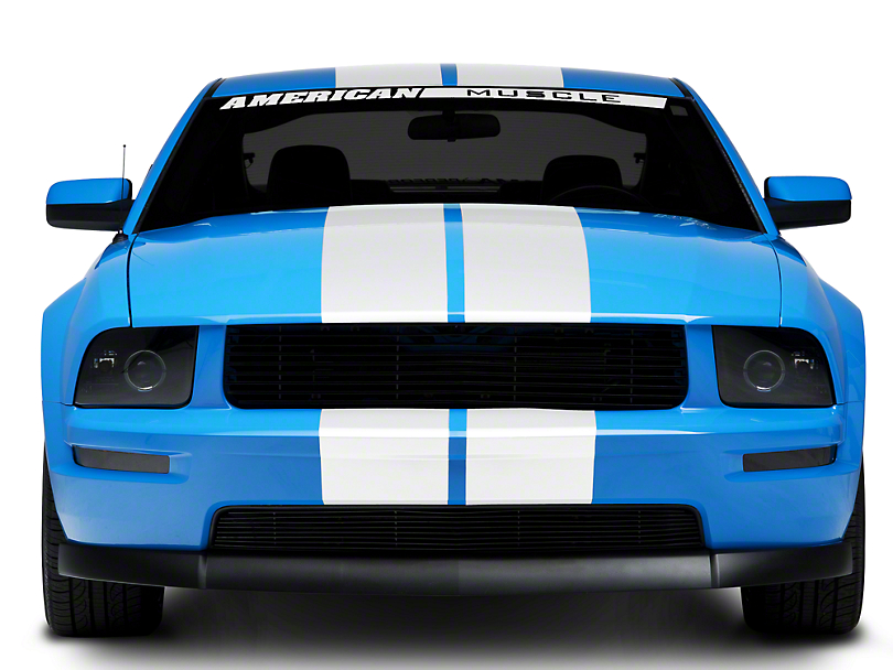American Muscle Graphics Lemans Stripes; White; 8-Inch (05-14 All)
