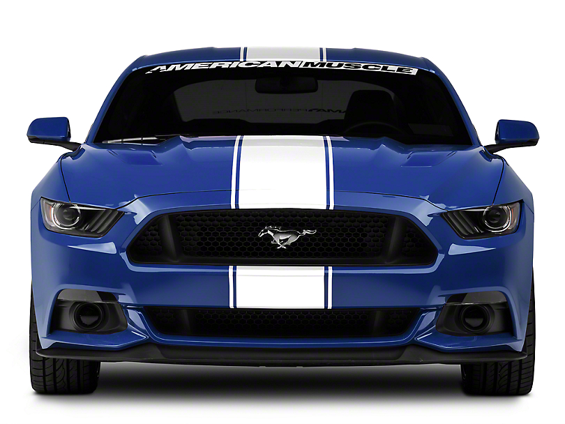 American Muscle Graphics White Super Snake Style Stripe Kit (15-19 All)