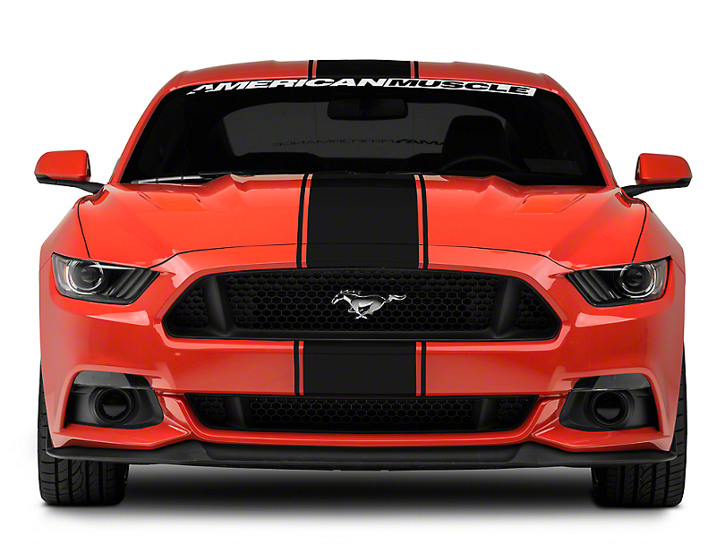 American Muscle Graphics Black Super Snake Style Stripe Kit (15-18 All)