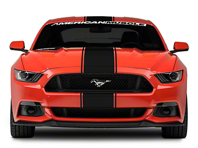 American Muscle Graphics Black Super Snake Style Stripe Kit (15-17 All)
