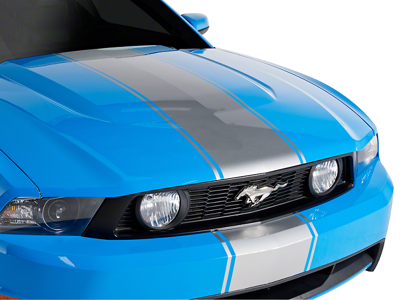 American Muscle Graphics Silver Super Snake Style Stripe Kit (79-18 All)