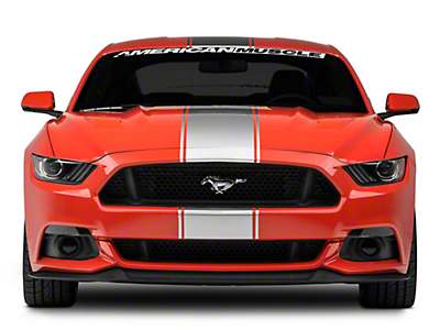 American Muscle Graphics Silver Super Snake Style Stripe Kit (15-18 All)