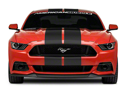 American Muscle Graphics Matte Black GT500 Style Stripes - 10 in. (15-17 All)