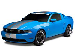 American Muscle Graphics GT500 Style Stripes; Silver; 10-Inch (79-20 All)