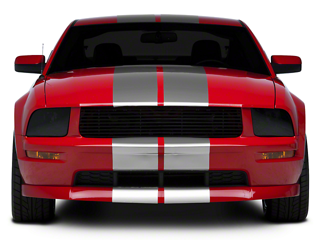 SEC10 GT500 Style Stripes; Silver; 10-Inch (05-14 All)