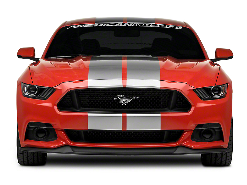 American Muscle Graphics Silver GT500 Style Stripes - 10 in. (15-17 All)