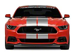 American Muscle Graphics GT500 Style Stripes; Silver; 10-Inch (15-20 All)