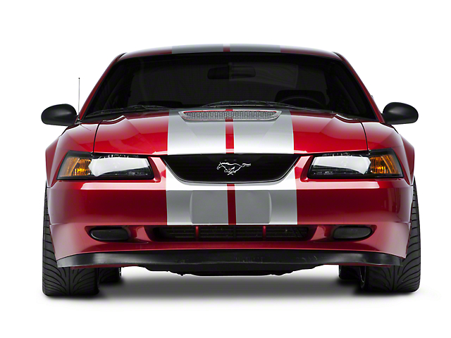 SEC10 GT500 Style Stripes; Silver; 10-Inch (94-04 All)