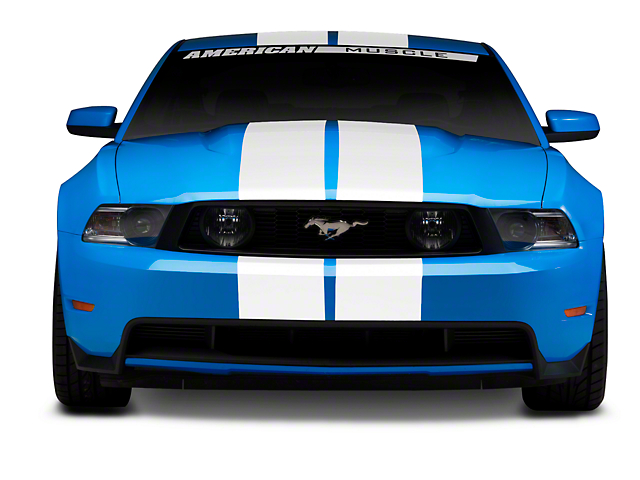 SEC10 GT500 Style Stripes; White; 10-Inch (79-20 All)