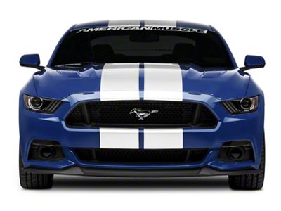American Muscle Graphics White GT500 Style Stripes - 10 in. (15-19 All)