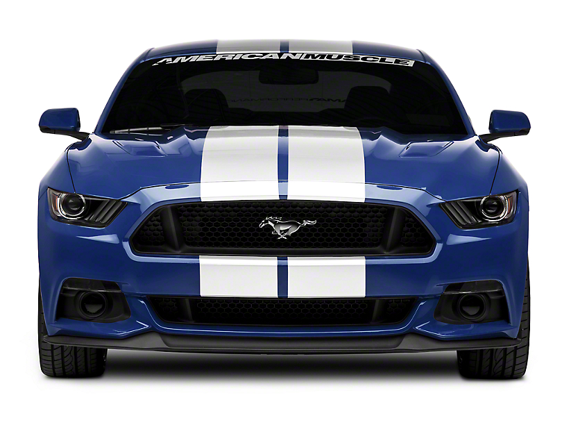 American Muscle Graphics White GT500 Style Stripes - 10 in. (15-18 All)