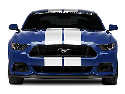 American Muscle Graphics White GT500 Style Stripes - 10 in. (15-17 All)