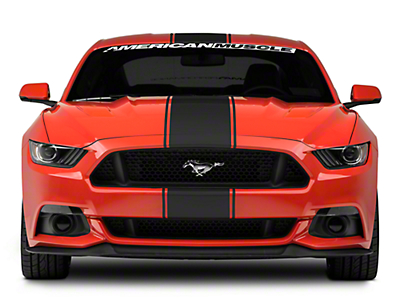 American Muscle Graphics Matte Black Super Snake Style Stripe Kit (15-17 All)