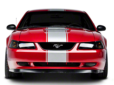 American Muscle Graphics Matte Black Super Snake Style Stripe Kit (94-04 All)