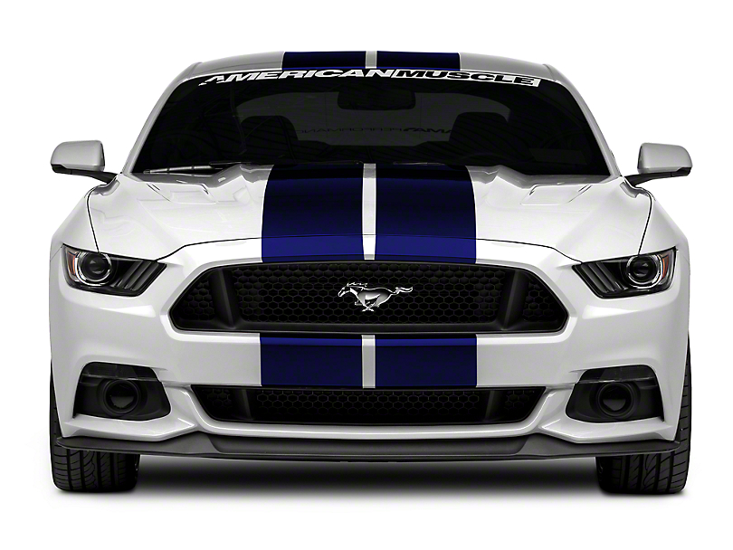 American Muscle Graphics Blue GT500 Style Stripes - 10 in. (15-17 All)