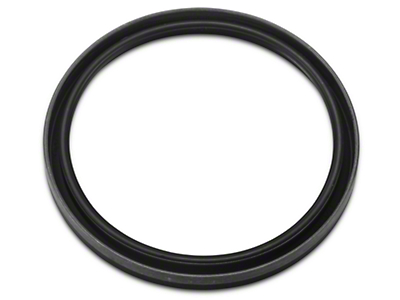 Ford Rear Main Seal (96-10 4.6L)