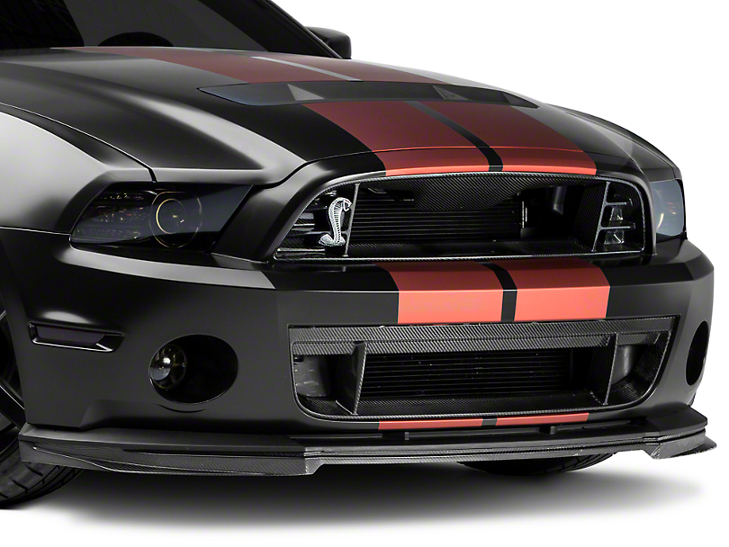 Trufiber Carbon Fiber Lower Grille (13-14 GT500)