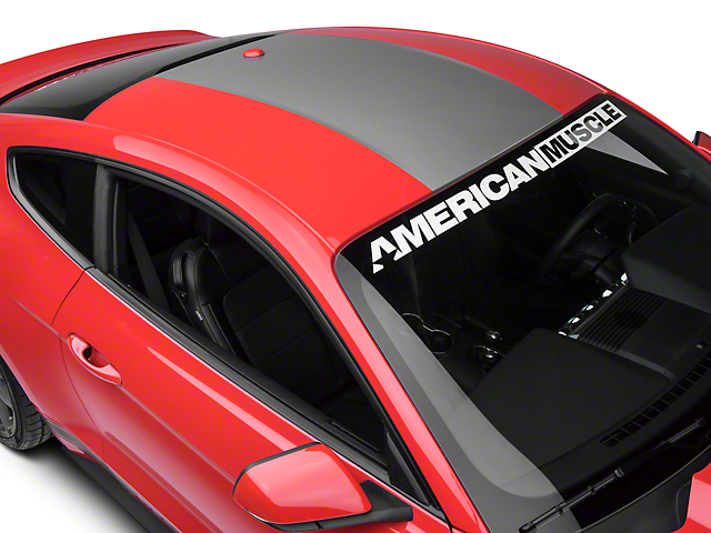 American Muscle Graphics Roof Panel Decal - Silver (15-18 All)