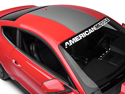 American Muscle Graphics Roof Panel Decal - Silver (15-17 All)