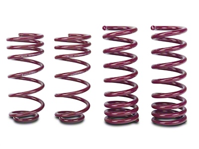 Vogtland Sport Lowering Springs (94-04 GT Coupe; 94-98 Cobra Coupe; 03-04 Mach 1)