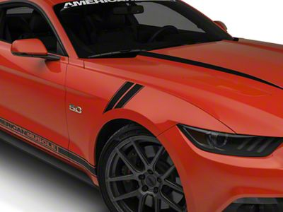 American Muscle Graphics Matte Black Pinstriped Hash Marks (15-19 All)