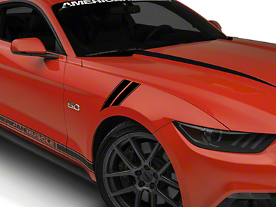 American Muscle Graphics Black Pinstriped Hash Marks (15-17 All)