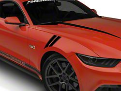 American Muscle Graphics Pinstriped Hash Marks; Black (15-20 All)