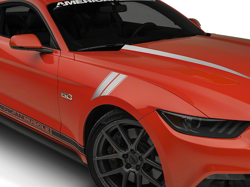 American Muscle Graphics Silver Pinstriped Hash Marks (15-17 All)